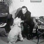 Na návštěvě u Hugo Haase (1968)